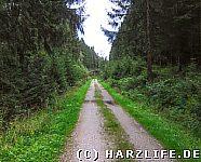 ehemalige Bahntrasse bei CLZ