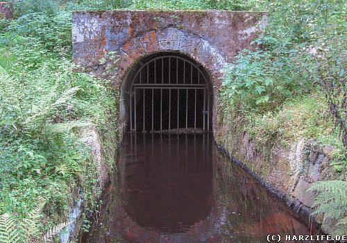 Der Bielenwieser Wasserlauf