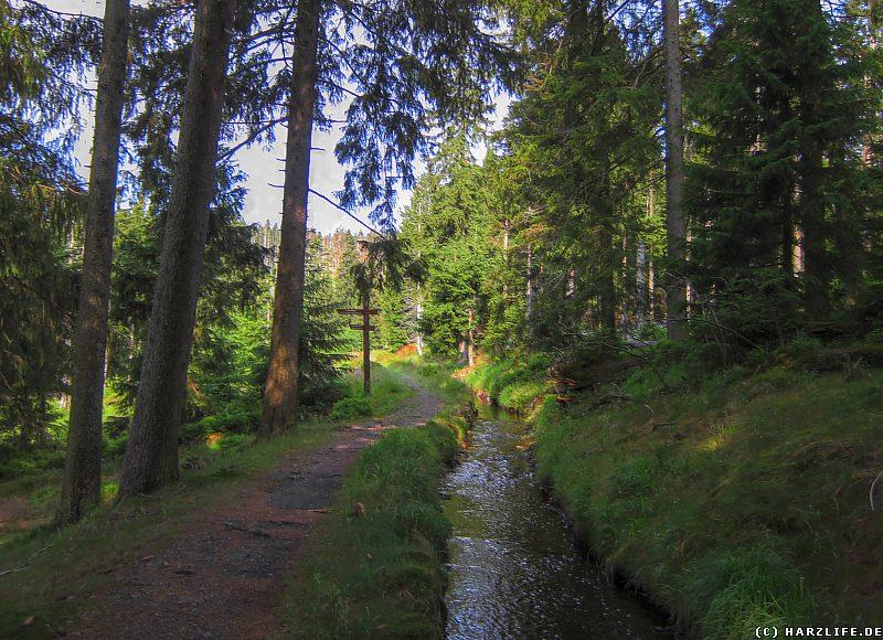 Weggabelung am Clausthaler Flutgraben
