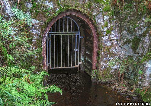 Der Coventhaier Wasserlauf