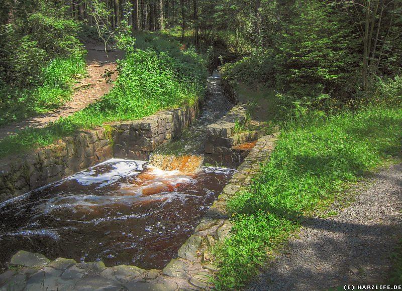 Ein Absetzbecken am Dammgraben