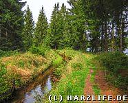 Dammgraben am Fortuner Teich