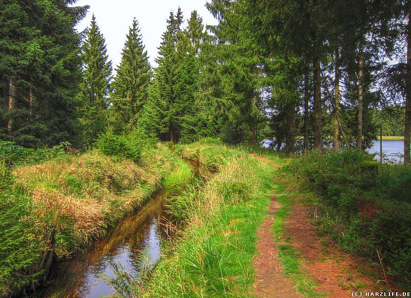 Südwestlich des Fortuner Teiches befindet sich zwischen dem Coventhaier Wasserlauf und dem Neuen Dietrichsberger Wasserlauf ein noch aktiver Abschnitt des Dammgrabens