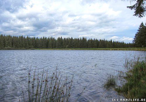 Der Jägersbleeker Teich