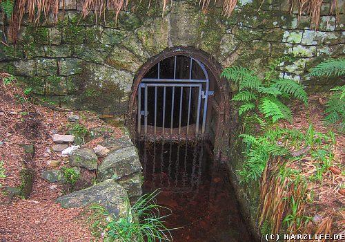 Der Kellwasser-Wasserlauf