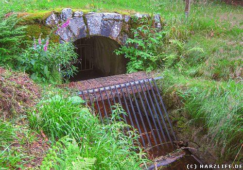 Der Rothenberger Wasserlauf