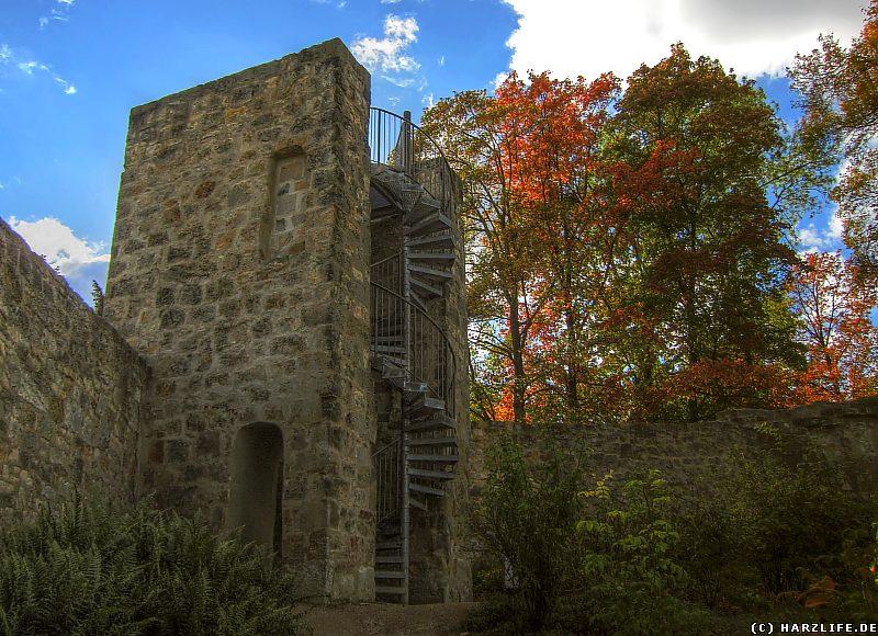 Der Aussichtsturm im Blankenburger Berggarten