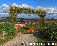 Blankenburg - Berggarten