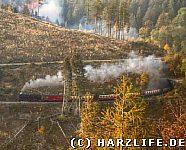 Harzquerbahn Drängetaltunnel