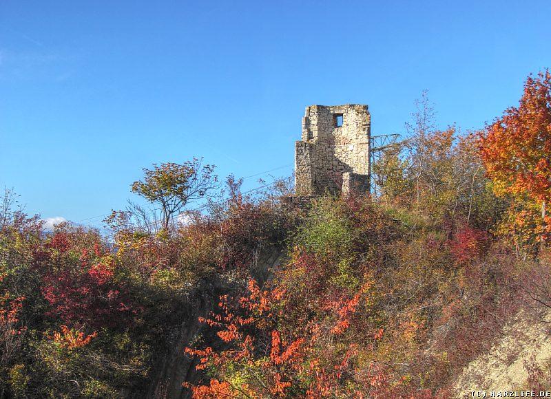 Ein alter Steinbruch auf dem Horstberg
