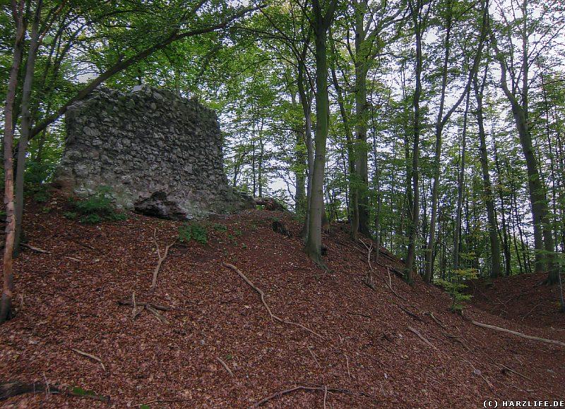 Burgruine Lichtenstein - Burggraben mit Mauerrest