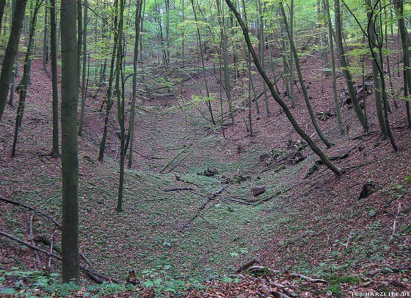 Doline auf dem Areal des Lichtensteins