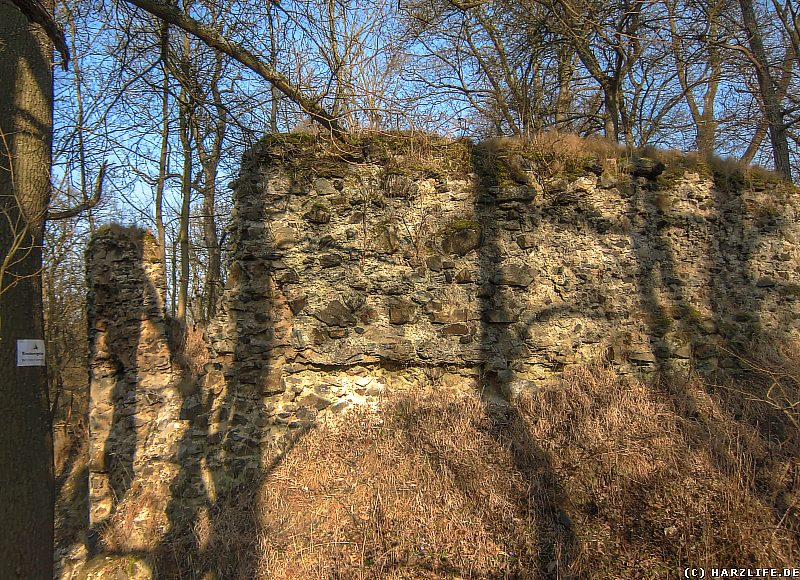 Mauern der Burgruine Heinrichsburg