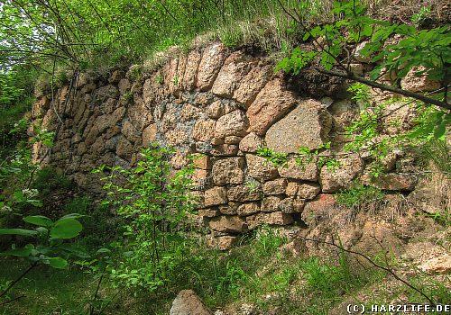 Die Burgruine auf dem Ilsenstein