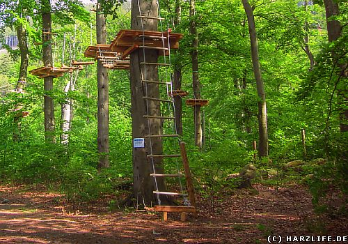 Der Erlebniswald Ilsetal in Ilsenburg