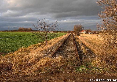 Gleis der Quäke bei Blankenburg