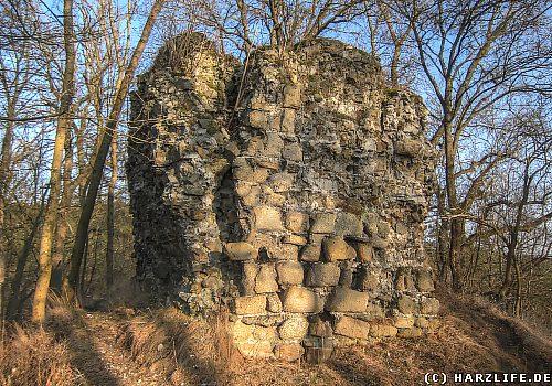Burgruine Heinrichsburg