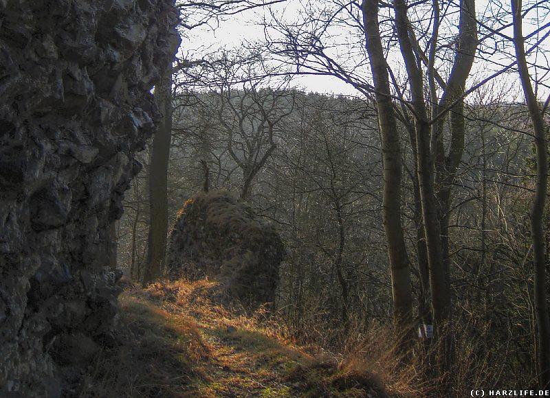 Auf dem Gelände der Burgruine Heinrichsburg