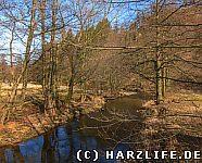 Selke bei Bröhms Brücke