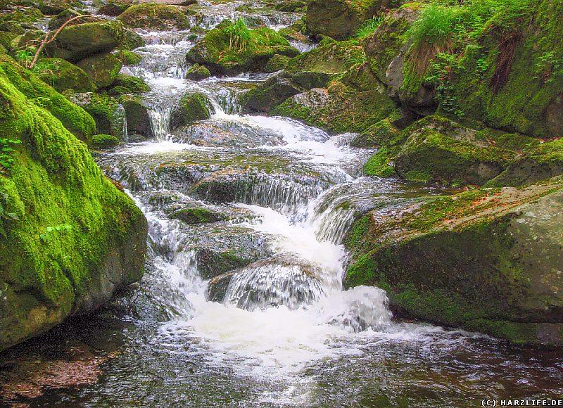 Wasserfall im Bereich der Unteren Ilsefälle