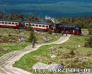 Heine-Wanderweg kreuzt die Brockenbahn