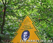 Puzzleteil Goethe