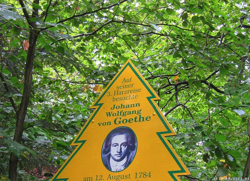 Goethe war hier - ein Puzzleteil