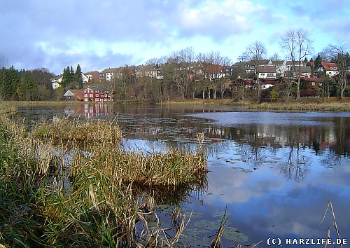 Eulenspiegler Teich in Clausthal-Zellerfeld