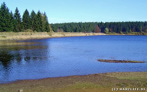Der Hirschler Teich bei Clausthal-Zellerfeld im Harz