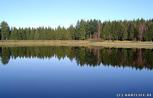 Der Kiefhölzer Teich