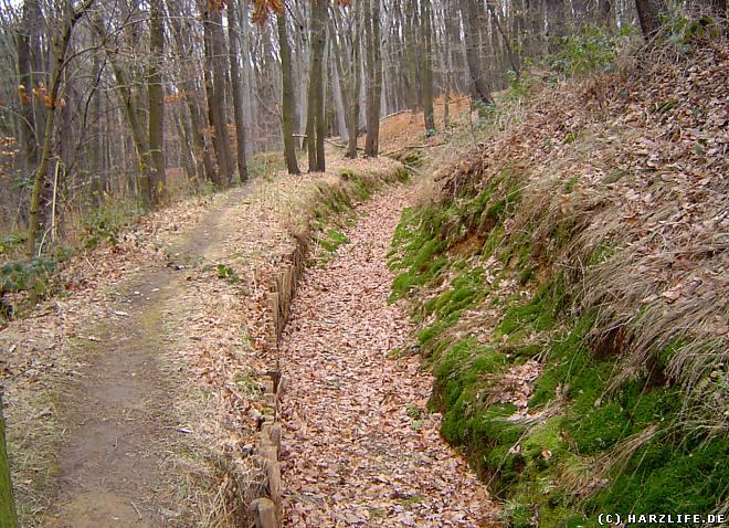 Der Mühlgraben der Regensteinmühle