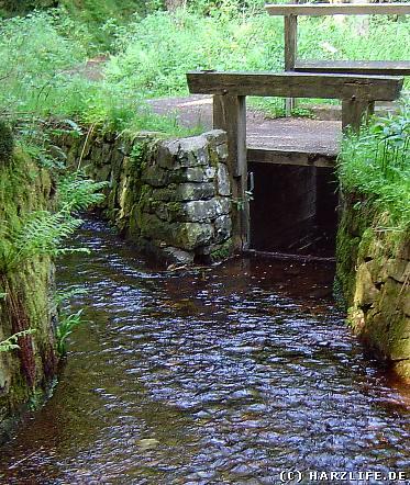 Wassergraben des Oberharzer Wasserregals