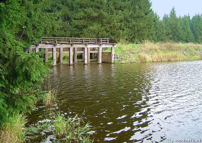 Der Prinzenteich mit Damm und Ausflut