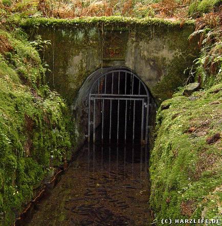 Der Schwarzenberger Wasserlauf
