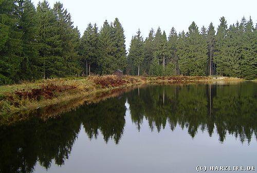 Der Semmelwieser Teich