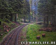 Bahnübergang Eckerloch