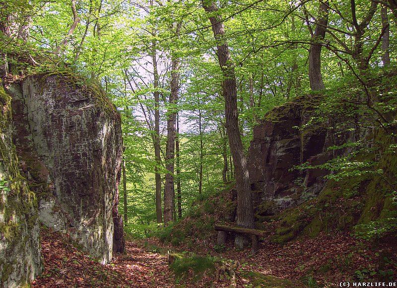 Hohlweg am Felsentor bei Neustadt