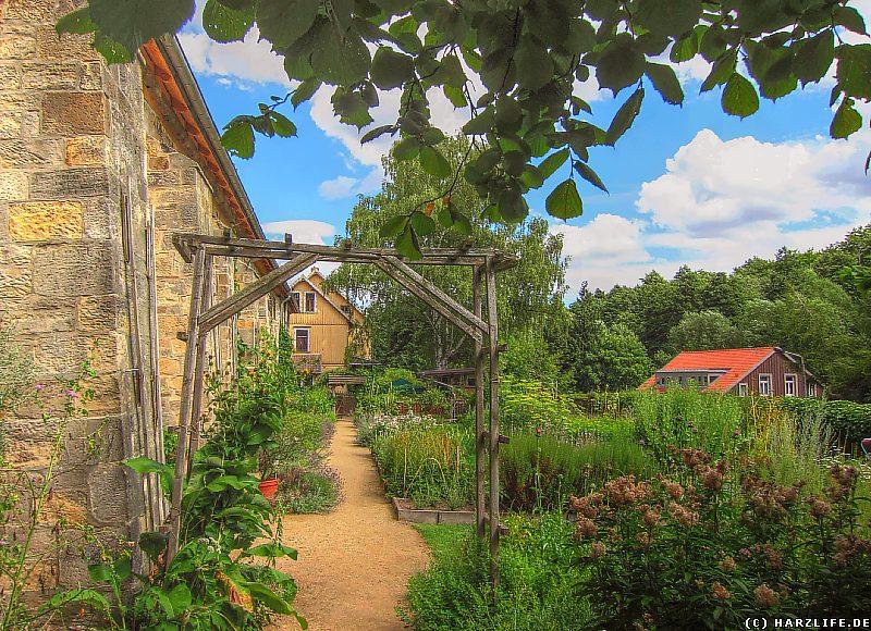 Kloster Michaelstein - Im Kräutergarten