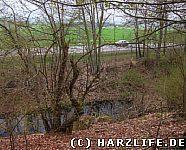 Aussicht vom Nordwall auf den Wassergraben und die B242