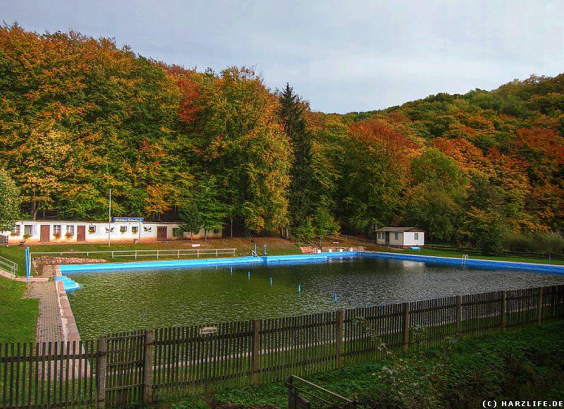 Das Waldbad in Grillenberg
