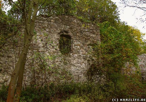 Die Burgruine Klettenberg
