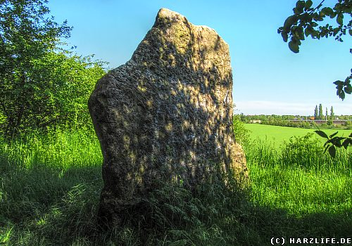Der Menhir ''Speckseite''