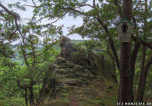 Der Anhaltinische Salstein - Felsklippe mit Aussicht ins