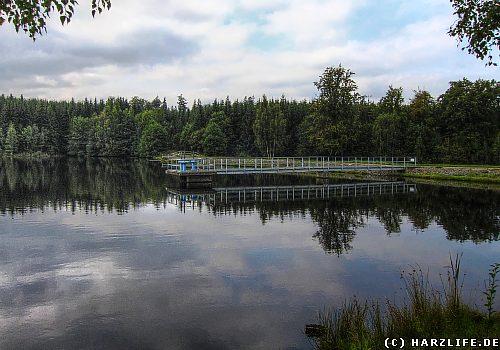 Der Neue Teich bei Gernrode